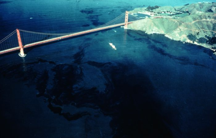 impact of oil spills on the environment There are a number of ways oil effects the environment it can decimate  populations, destroy ecosystems, ruin beautiful landscapes, and cause.
